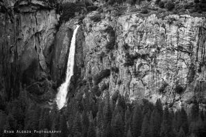 lower falls bw.jpg